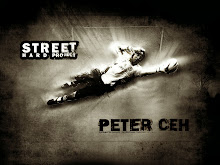 Cech goalkeeper Peter Cech