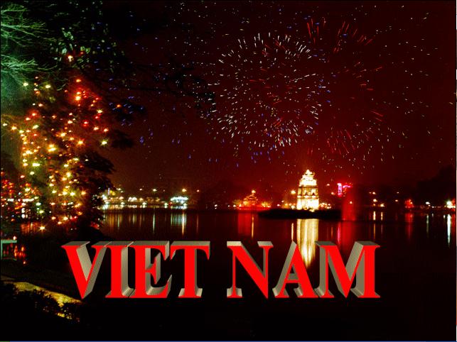 HAPPY NEW YEAR 2013 Vietnam