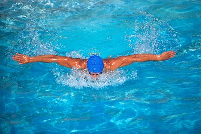 NSSC Dolphin Swim!