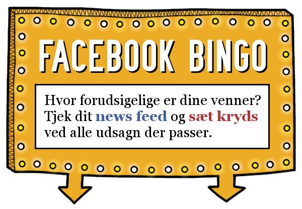 Hvor mange krydser kan du sætte i Valdefars facebook bingo?