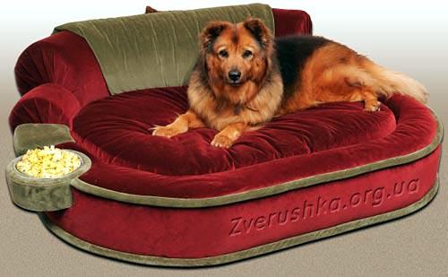 Лежаки для крупной собаки