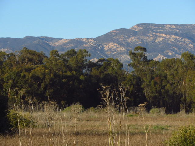 mountains behind Goleta