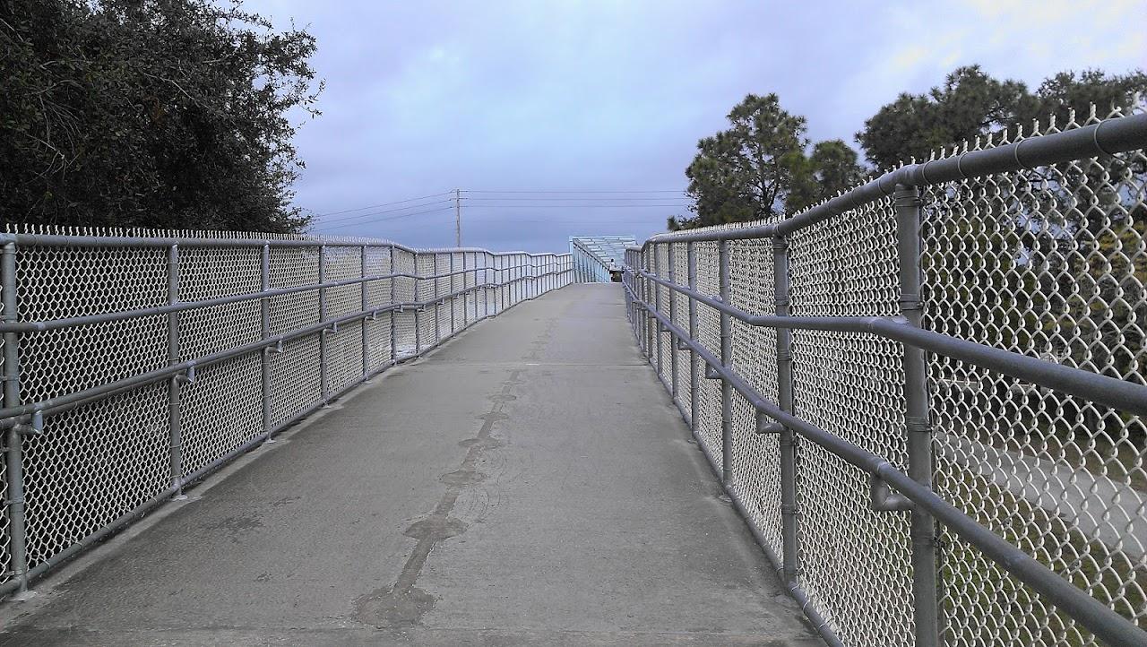 IMAG0061 Clearwater Marathon Recap