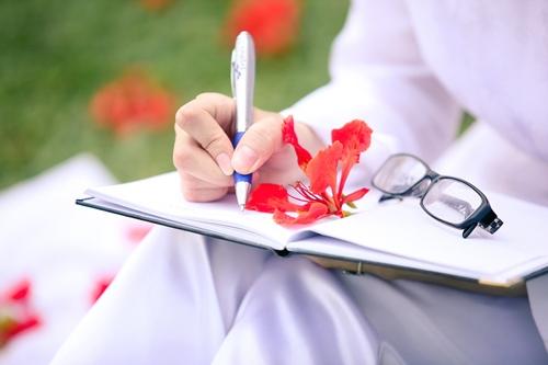 Cánh phượng hồng gắn liền với tuổi học trò