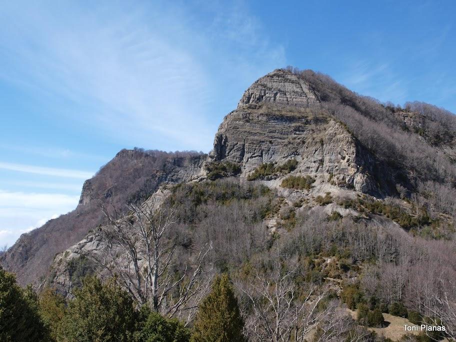 Puigsacalm i Puig dels Llops.