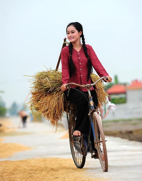 Ảnh cô gái quê chở lúa bằng xe đạp