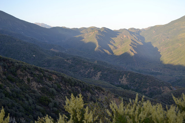 upper sections of the north fork Matilija valley