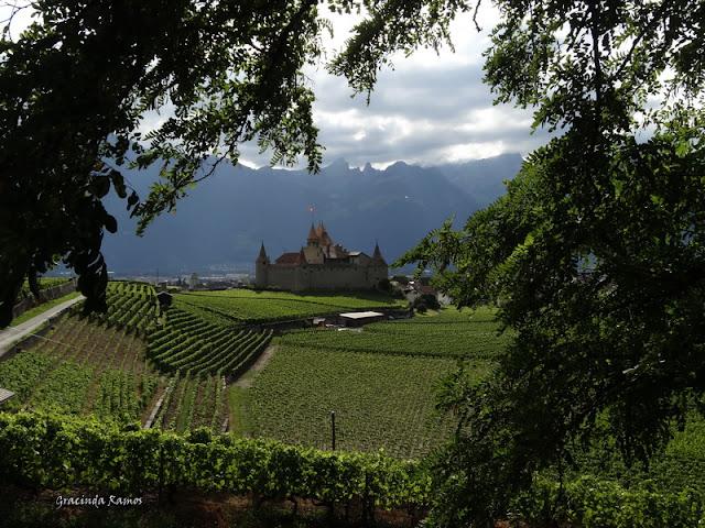 passeando - Passeando pela Suíça - 2012 - Página 9 DSC02288