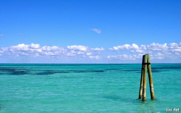 ảnh biển đẹp trong xanh