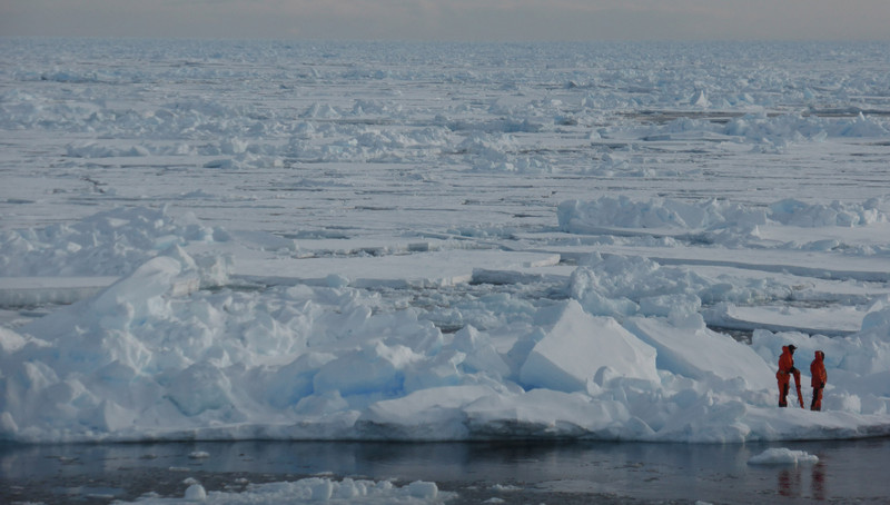 Environment: Quantifying the individual contribution to Arctic sea-ice melt