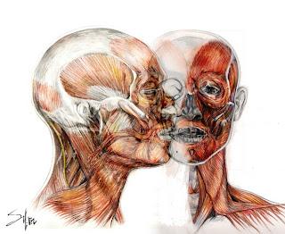 Dibujo y Creacin DIBUJO DE LA FIGURA HUMANA