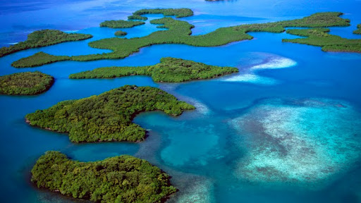 Mangrove Islands, Belize.jpg