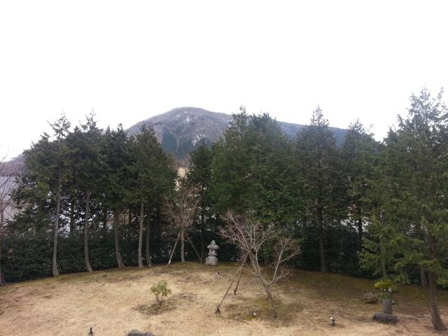 目的もないまま箱根の温泉宿へ。