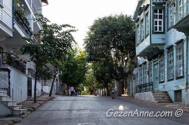 Heybeliada'daki tarihi evler