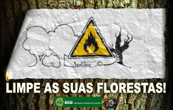 FLORESTAS LIMPAS by Laetitea (publicação)