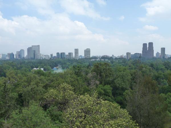 Parque central del DF