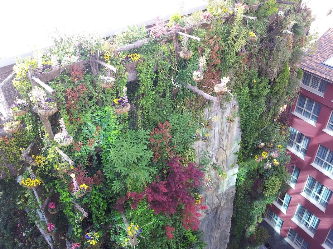 Jardines verticales curso formación jardín vertical greenwall formación en jardinería vertical ecosistema greenwall