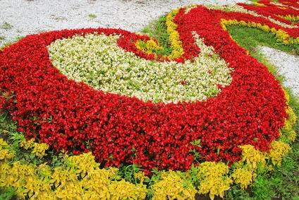 Crie jardim como fazer canteiros de flores no jardim for Annual flower garden designs