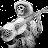 Chris Solarte avatar image