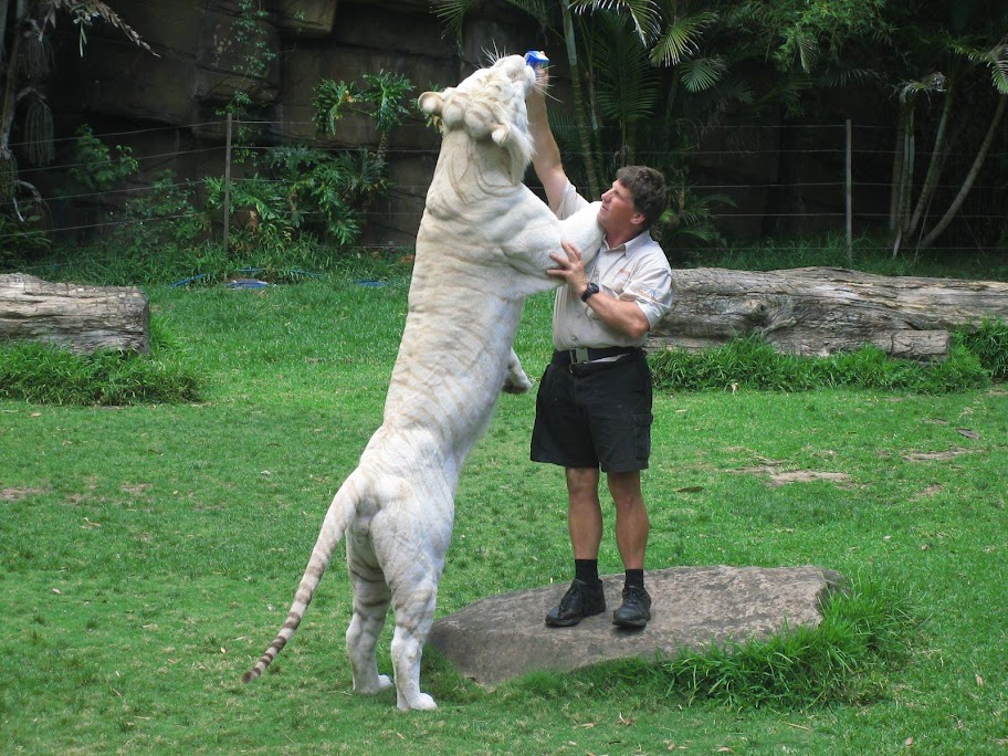 Comparação de  tamanho entre  animais  e   Seres humanos - Página 2 12622ddb1052ca78d1164e13