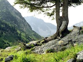 Tirol: Vilsalpsee, Rauhhorn, Traualpsee