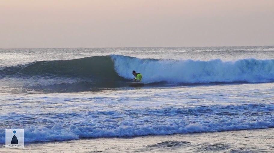 서핑 배우기