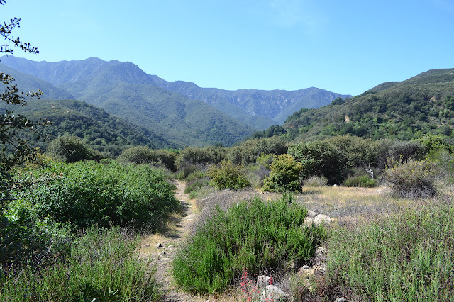 Murietta Canyon Trail