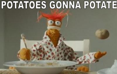 pots my muppet memes muppet central forum