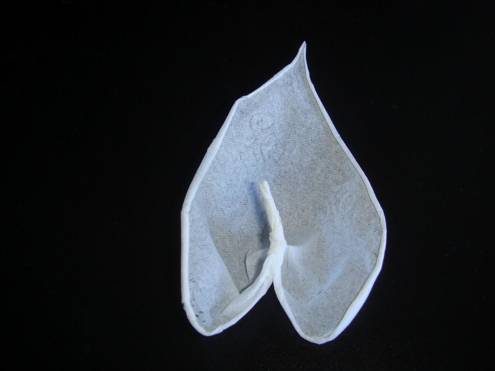 Toilet Paper Origami Book | 1200x1600