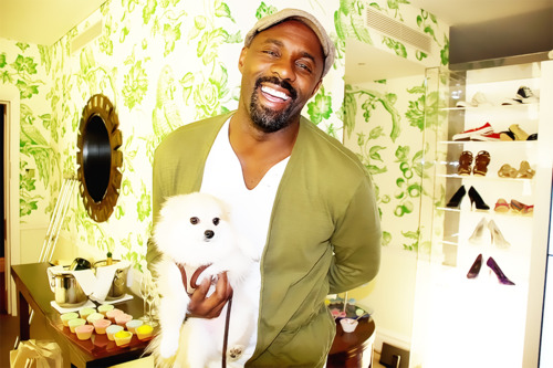 Idris Elba and a dog