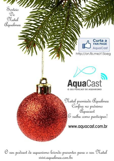 AquaSpoiler 6 - Promoção de Natal