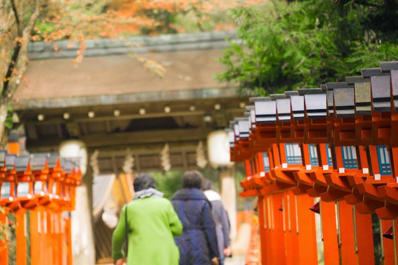 京都 貴船神社 紅葉 写真6