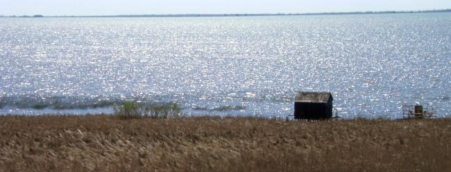 Ufer des Erie-See, Ontario,Kanada