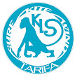 Kite Local School Tarifa E