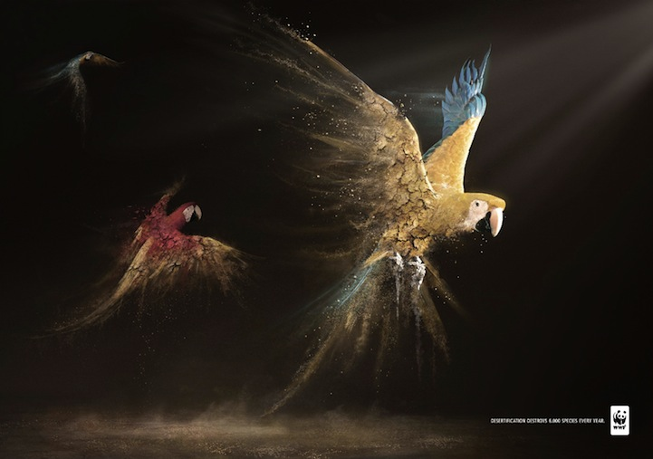 Amazing Ad Campaign By WWF: Desertification Disintegrates Animals-parrots