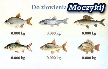 Moczykij