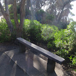 Bench seat along the track (102063)