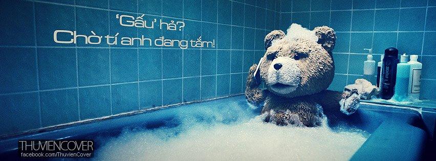 Ảnh bìa chú gấu