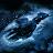 Timm Portman avatar image