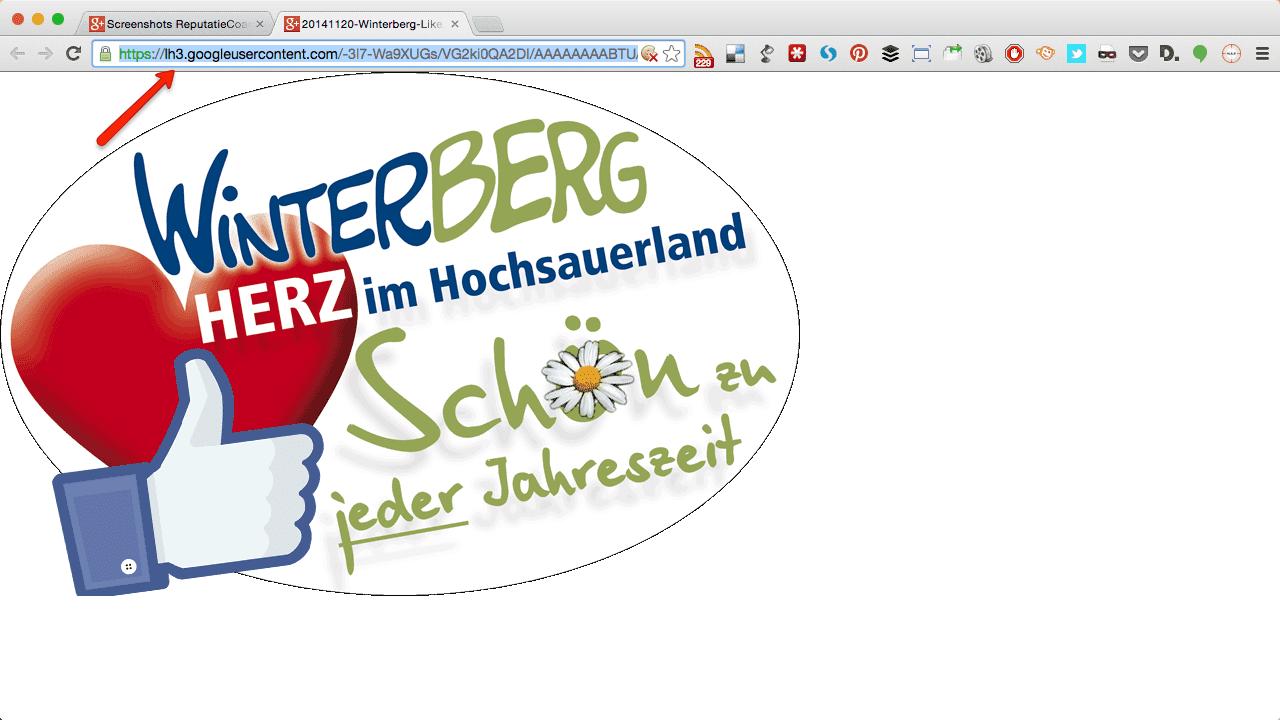 Kopieer URL
