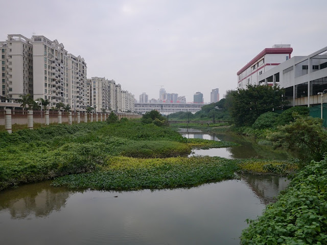 Farther away view of the Zhuhai Railway station with Zhuhai buildings on the left and in the center