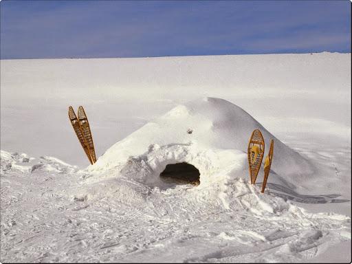 Snow Shelter, Dodge Nature Center, Mendota Heights, Minnesota.jpg
