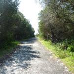 Henry Head Trail (309617)