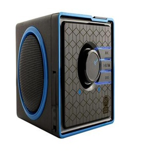 Accessory Power GOgroove speakers