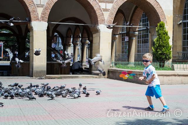 Kastamonu merkezdeki Nasrullah Cami'nin avlusunda kuşları kovalarken