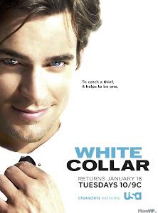 Cổ Cồn Trắng 2 - White Collar Season 2 poster