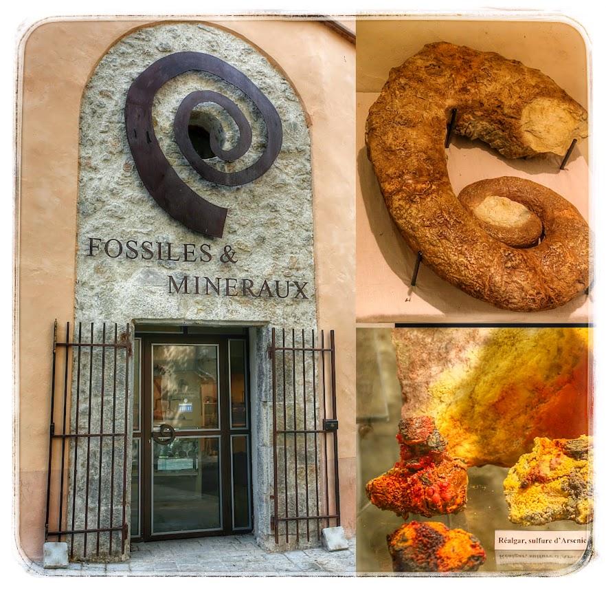 musee_fossiles_et_mineraux_bargemon_Dracenie-var-provence