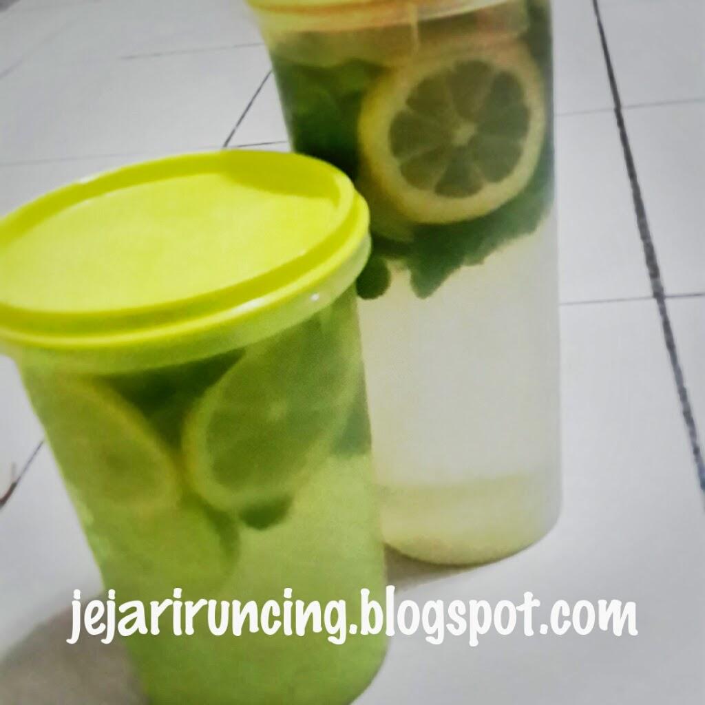 Yuk, Bikin Infused Water Sendiri Biar Tubuh Nggak Kekurangan Vitamin! Ini Resepnya
