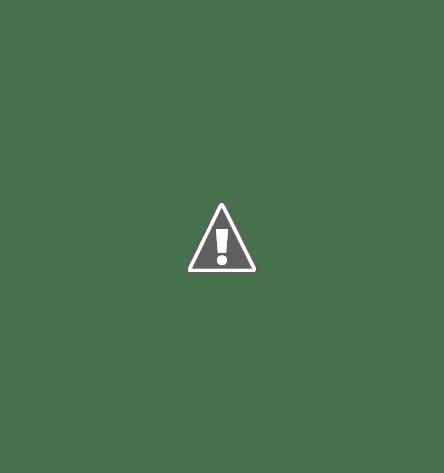 Эхолоты для рыбалки отзывы. Рыбопоисковый эхолот Furuno FCV-1200L обзор.