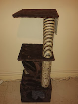 Cat play & sleep tower